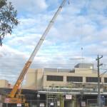 Oz Cranes